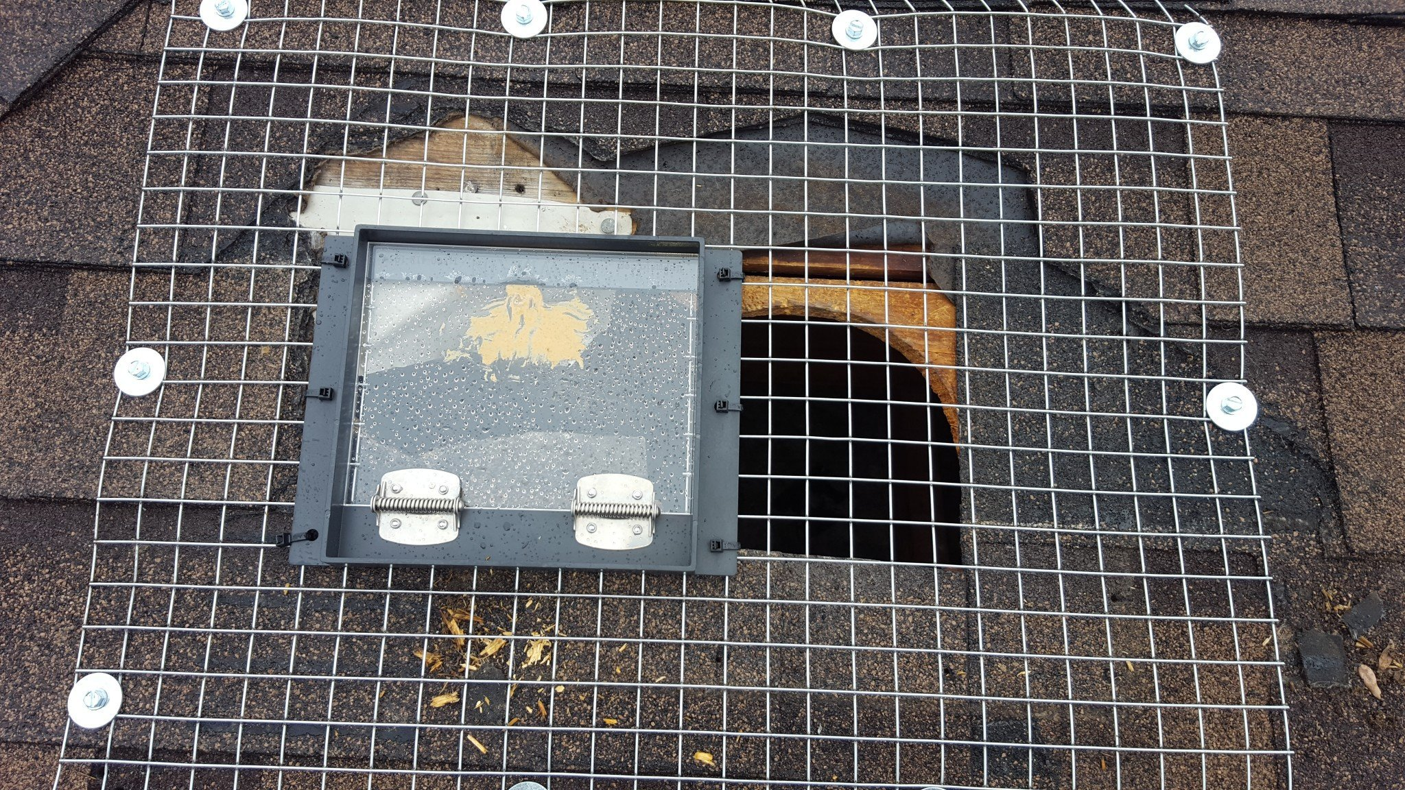 Got raccoons breaking and entering your ventilation caps?