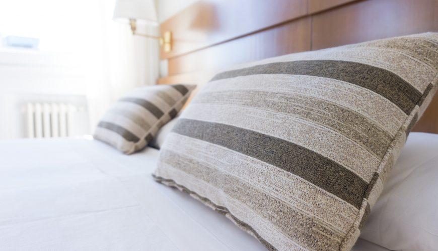 Bed Bug Control in Toronto & the GTA